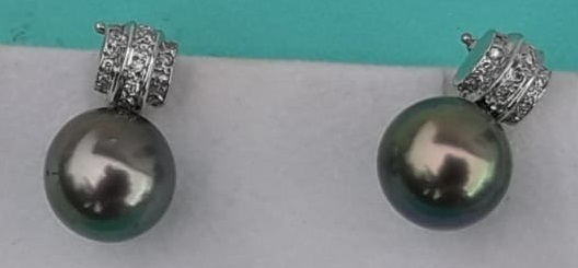 18kt White Gold Tahitian Pearl Earrings