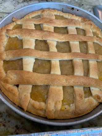 Down Home Coconut / Pineapple Tart (small)