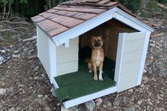 Sell: Bahamas Style Doghouse