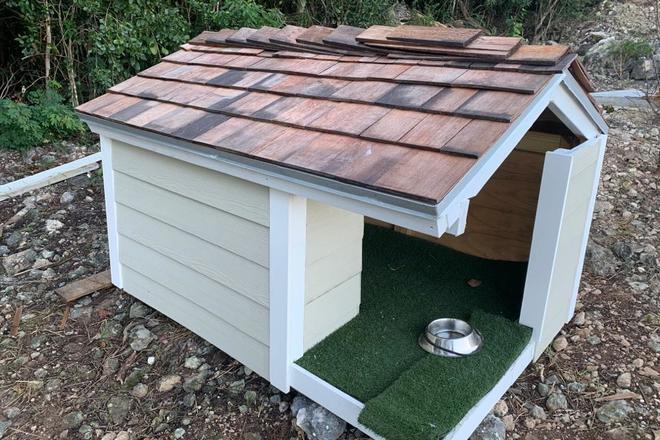 Bahamas Style Doghouse