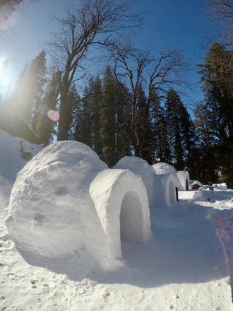 Renting out: igloo house Manali