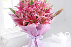Selling: Flamingo Pink Asiatic Lilies Box