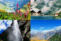 Hosting: Valley of flowers trek