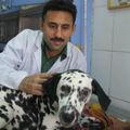Veterinarian:  Dr. Satbir Josan