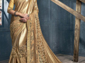 Selling: Embroidered Lycra Saree in Beige