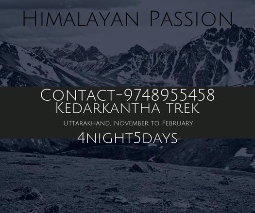 Offering Services: Kedarkantha Trek
