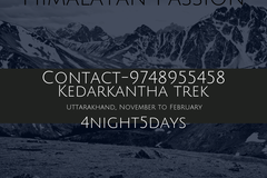 Offering Services: Kedarkantha Trek
