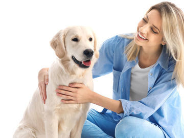 Veterinarian: Pet Care