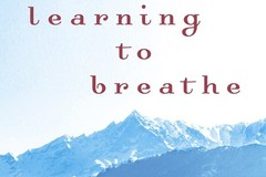 Renting out without online payment: LEARNING TO BREATHE