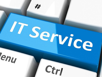 Service: I.T. Professional Services