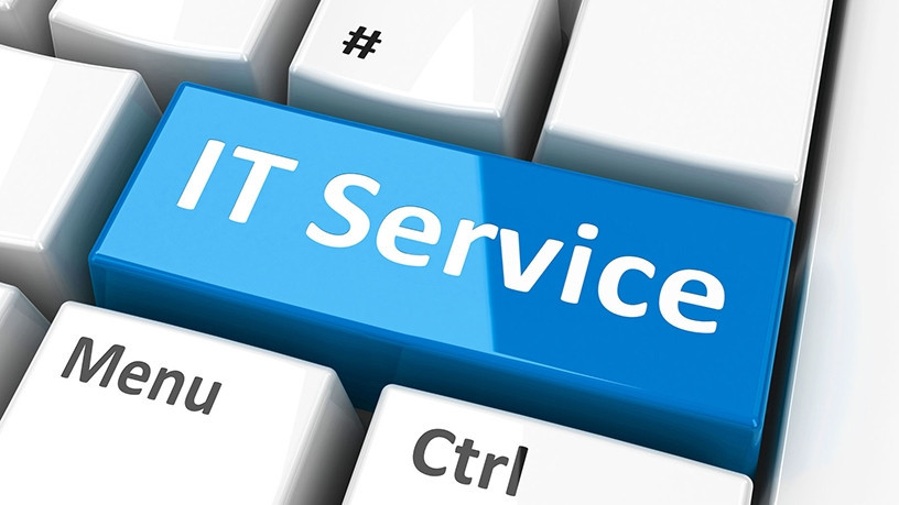 I.T. Professional Services
