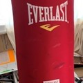 Rent: Punching Bag & Gloves