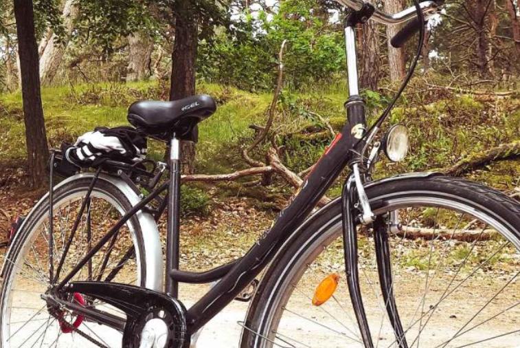 TREKKING URBAN - Noleggio bici Nogarè, Treviso