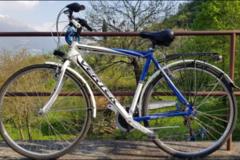 Affitto con pagamento online: Noleggio bici CITY BIKE VERTEK CLASSICA - Lago di Como