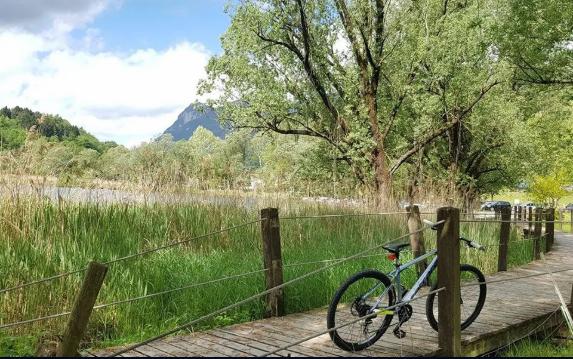 Noleggio bici CITY BIKE VERTEK CLASSICA - Lago di Como