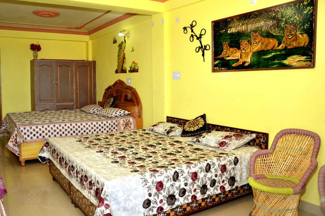 Renting out: Green Valley Home Stay in Sanjauli , SHIMLA , HP