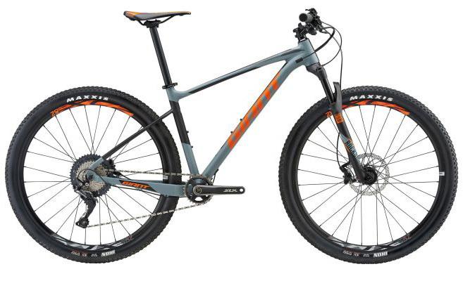 Noleggio bici GIANT FATHOM 29er 2 GE - Lago di Garda