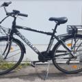 Affitto con pagamento online: CITY BIKE MAINO - Noleggio bici Lago d'Iseo