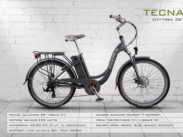 Renting out with online payment: TECNA CITY TREK - Noleggio ebike Lago d'Iseo