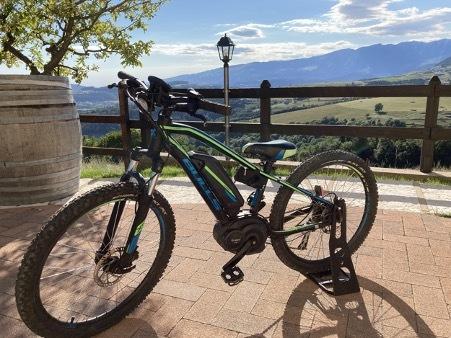 Noleggio Bici E-Mtb Bulls Front (Junior) - Erbezzo