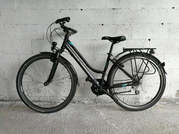 Affitto con pagamento online: CITY BIKE TREKKING - Noleggio city bike Mantova