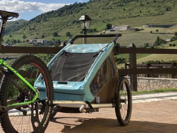 Affitto con pagamento online: Noleggio rimorchio bici trasporta bambini - Erbezzo