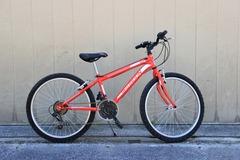 Affitto con pagamento online: MTB Junior - Noleggio mountain bike Lago di Garda