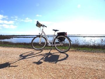 Affitto con pagamento online: CITY BIKE CLASSICA - Noleggio Bici Casale sul Sile TV