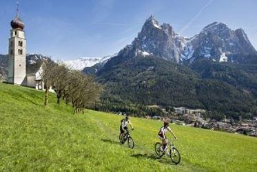 MTB Adulto - Noleggio bici Ponte di Legno