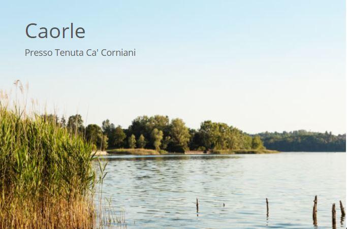 BOTTECCHIA FX109 - Noleggio mtb Caorle