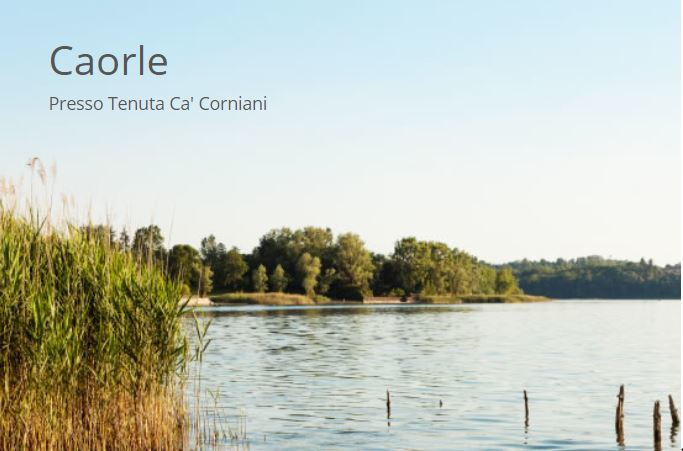 GENERIC TERRA BIKES - Noleggio cammello bici Caorle