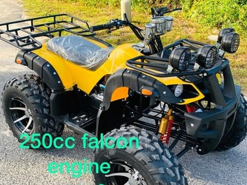 Sell: 250cc 4-Wheeler