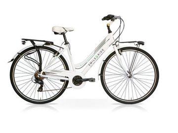 Affitto con pagamento online: CITY BIKE - Noleggio city bike Pisa