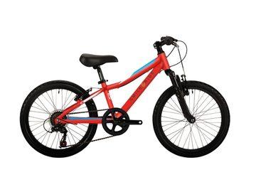 Affitto con pagamento online: BICI Bambino - Noleggio bici da bambino Pisa