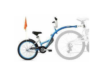 Renting out with online payment: CAMEL BIKE - Noleggio cammellino Pisa
