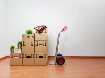 Renting out without online payment: Moving dolly