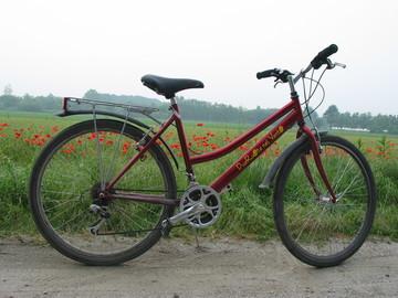 """Affitto con pagamento online: City Bike media gamma Bianchi 26"""" e 28"""" - Noleggio Bici Torino"""