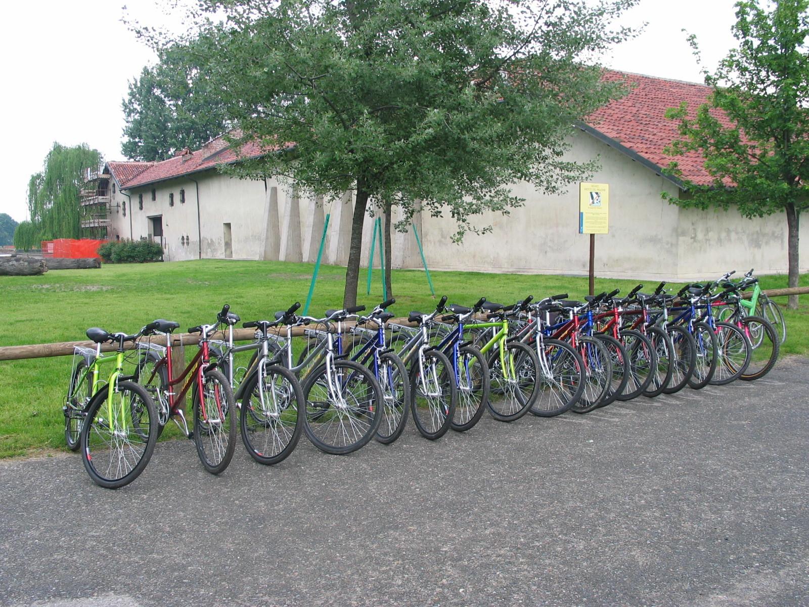 "City Bike media gamma Bianchi 26"" e 28"" - Noleggio Bici Torino"