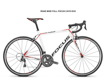 Renting out with online payment: FOCUS CAYO EVO - Noleggio road bike Castellina in Chianti