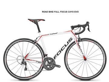 Affitto con pagamento online: FOCUS CAYO EVO - Noleggio road bike Castellina in Chianti