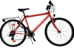 Affitto con pagamento online: Mountain Bike - Noleggio Bici Marina di Ravenna