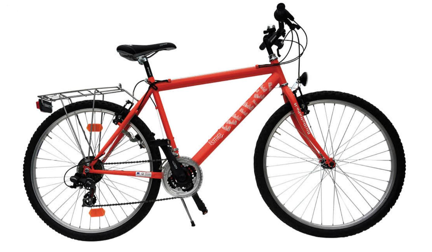 Mountain Bike - Noleggio Lido Adriano