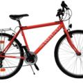 Affitto con pagamento online: Mountain Bike - Noleggio Bici Bologna