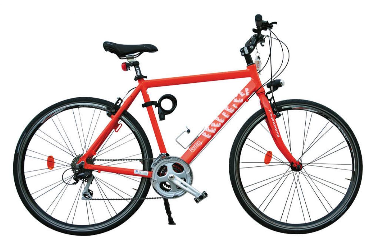 Racing Bike - Noleggio Bici Lido Adriano