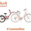 Affitto con pagamento online: Bici + CAMMELLINO - Noleggio bici e cammellino Bologna