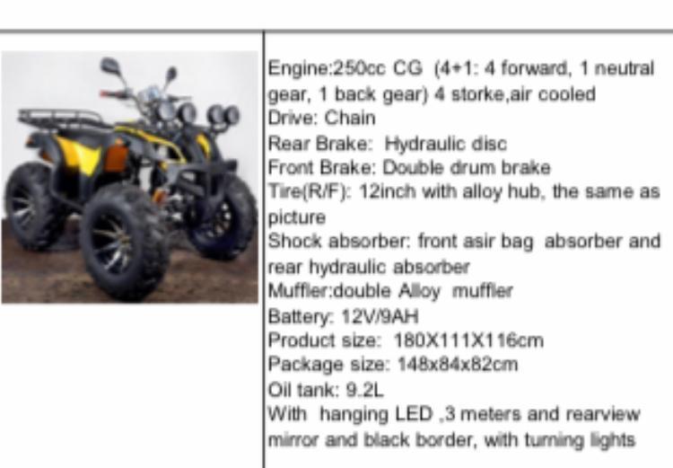 250cc 4-Wheeler
