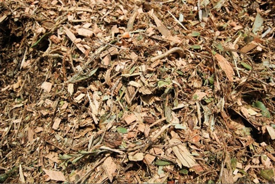 Fresh Forest Mulch