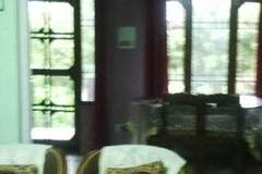 Renting out: HOMESTAY IN P.O - DARI - DHARAMSHALA