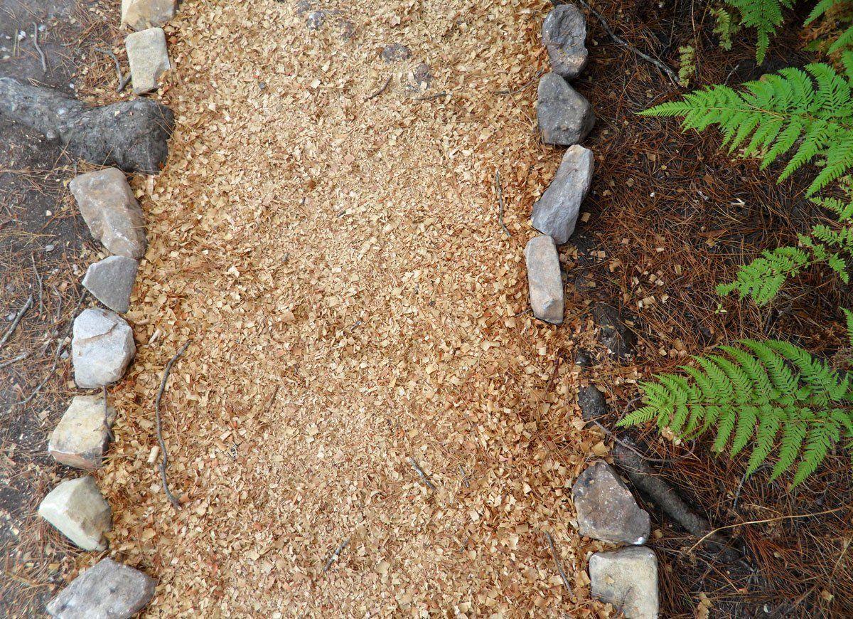 Sawdust (min 10m³)