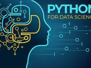 Consultation: Complete Data Science Training with Python for Data Analysis